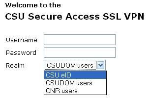 SSL VPN Login